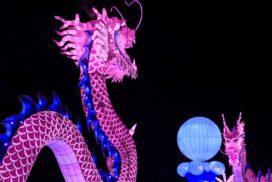 dragonホワイトドラゴンとピンクゴールドドラゴン