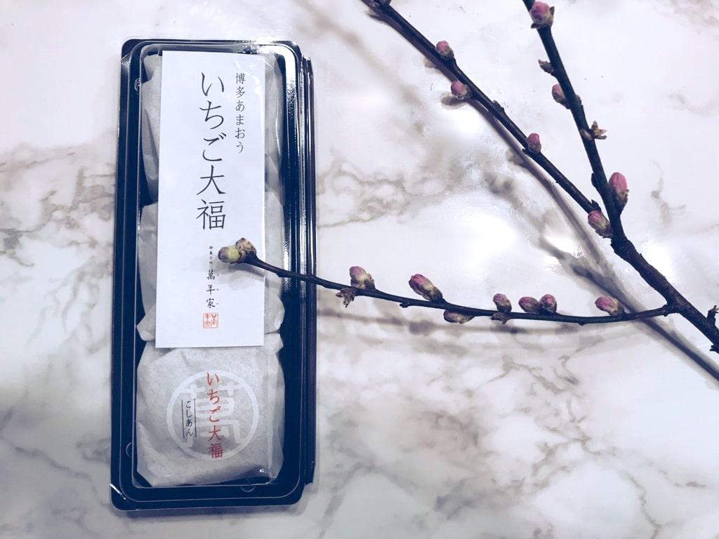 ichigodaifuku_hakataamaou_001-min