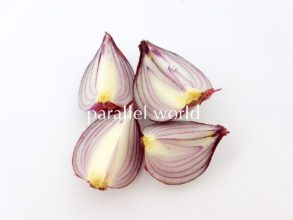 un_onion_t-min