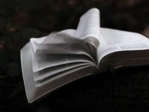 偶然開いた本のページ